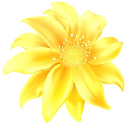 floramarela