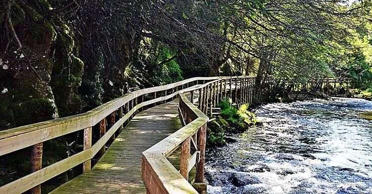 Quinta do Pomarinho - Turismo Rural - - Sabe Mais